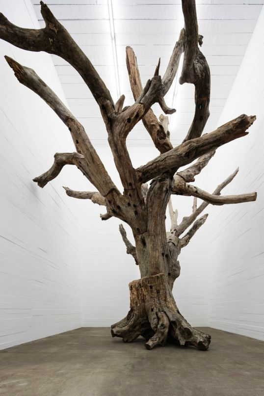 Bomb Shelter Displays Ai Weiwei's Tree, Kate Moss's Broccoli